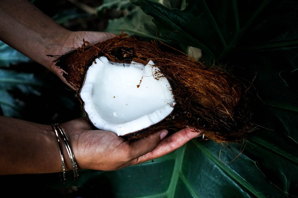 The Benefits of Coconut + Why it's in Planet Protein