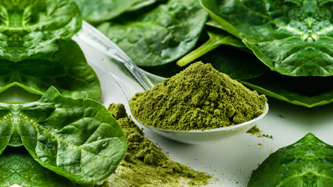 5 Ways to Decalcify the Pineal Gland   Chlorella