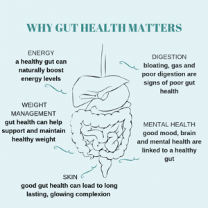 gut health, microbiome