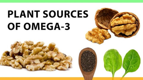 omega 3 sources plant based