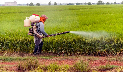 pesticide harmful effects