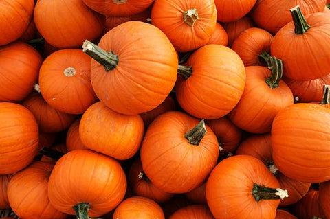 pumpkin antioxidants