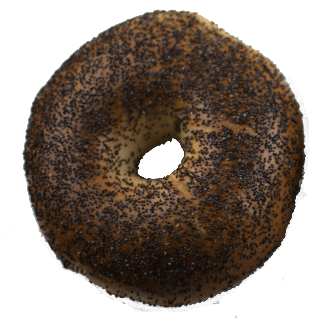 Whole Wheat Poppy Bagel