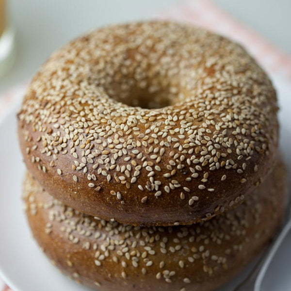 new york bagel sesame