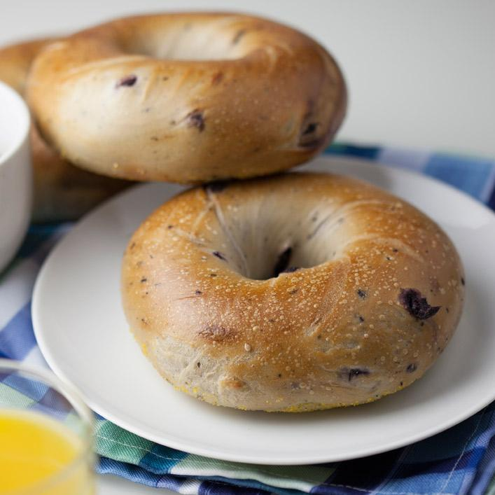 new york bagel blueberry