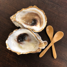 Oyster Shell Salt & Pepper Set