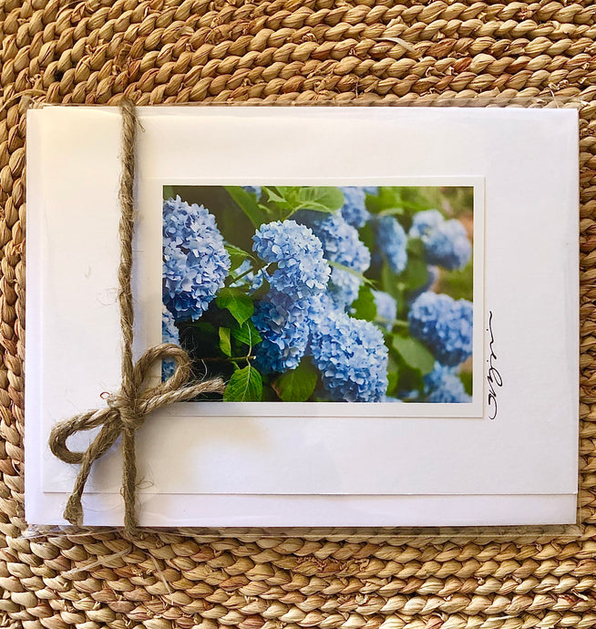 Nantucket Blue Hydrangeas Card Set