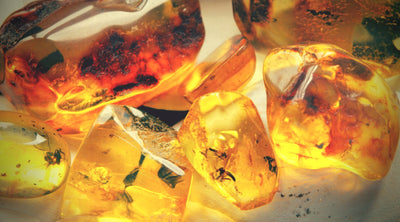 Amber Symbolism: What Does the Gemstone Represent?