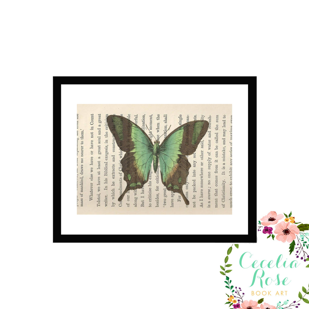Cecelia Rose Book Art - Vintage Green Butterfly