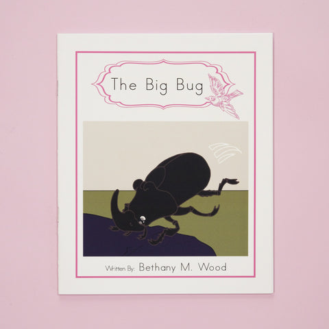 PK-B-4 The Big Bug