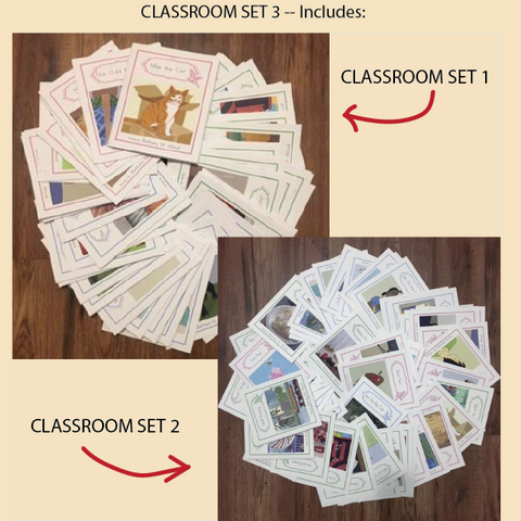 CLASSROOM SET 3 -- Contains 100 books