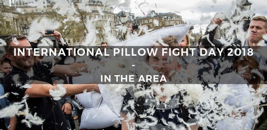 International Pillow Fight Day 2018 In The Area 1