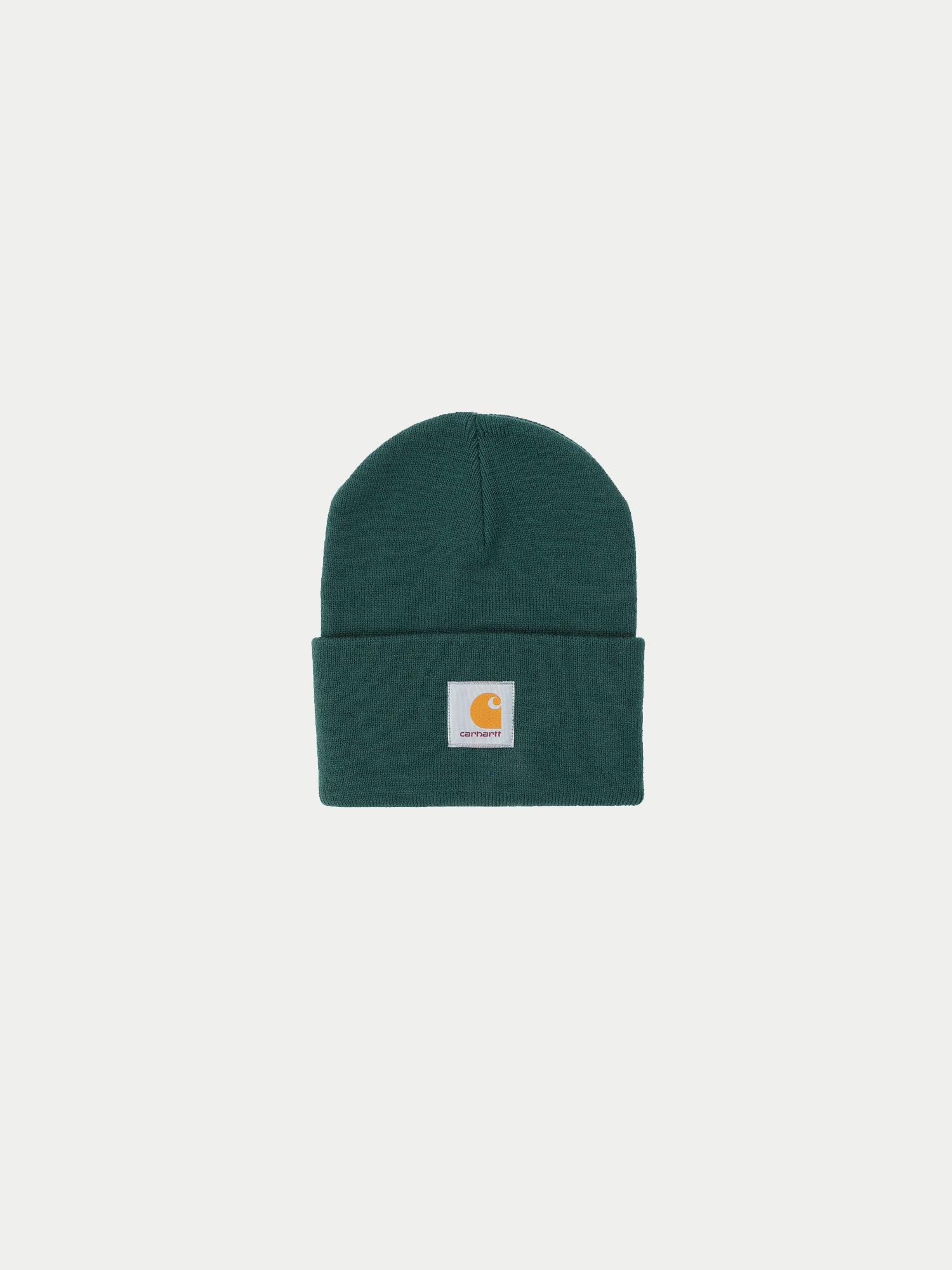 Carhartt Watch Hat (Dark Fir) 1
