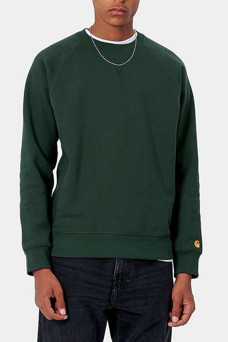 Carhartt WIP Chase Heavy Sweatshirt (Dark Teal) Model