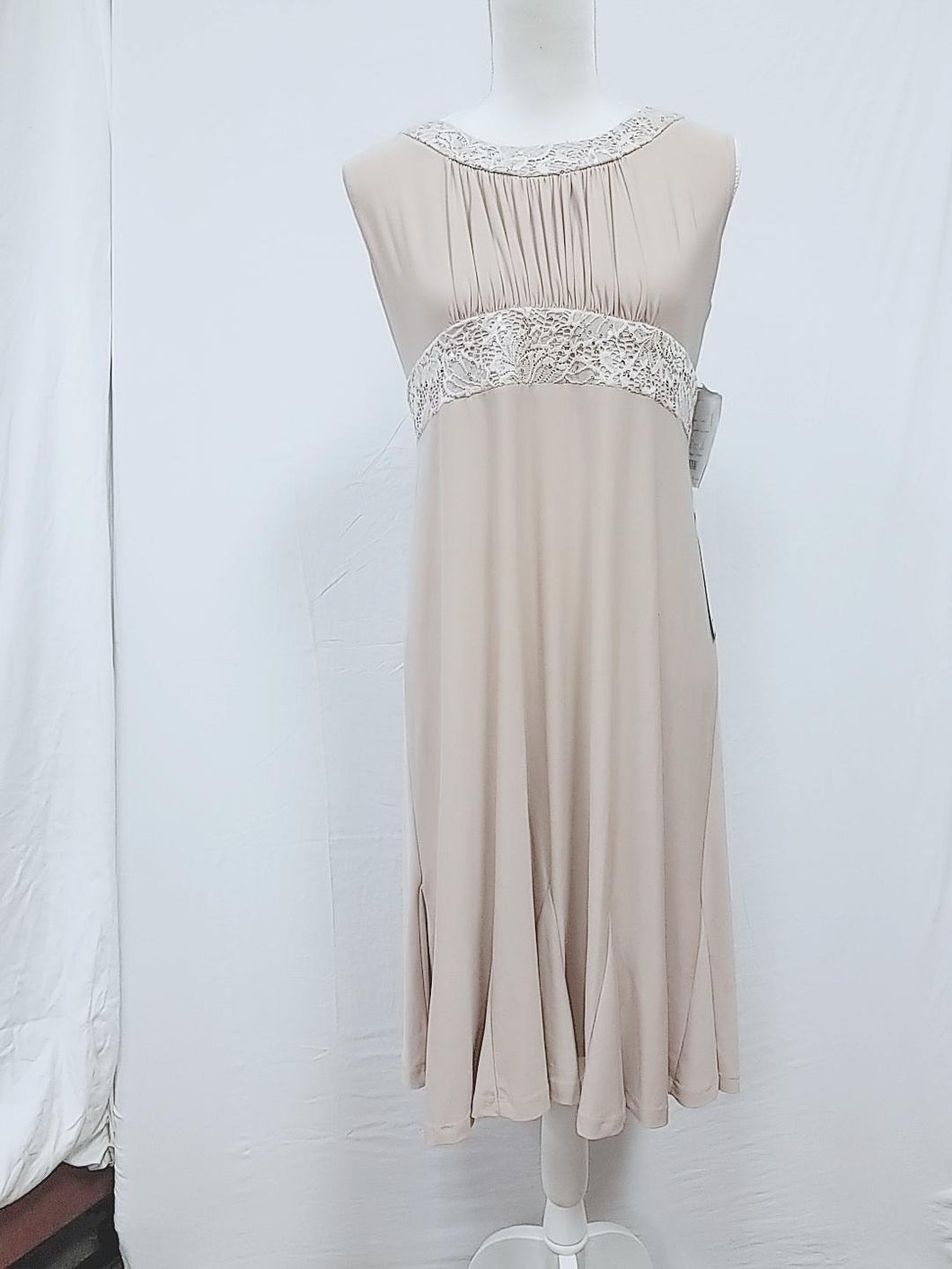 R&M Richards Champagne SZ 12 Dress-NEW