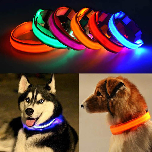 LED Pet Nylon Collar - GottaHaveNow.com