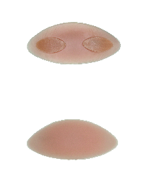 Silima Xtra Partial Breast Form