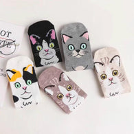 Cute Cat Crew Socks (5 Pack)