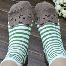 Happy Sock Cats gift