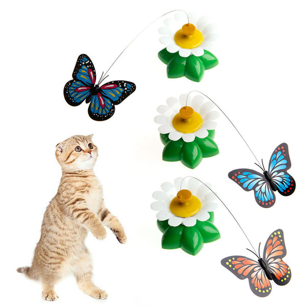 FREE Rotating Butterfly Cat Rod