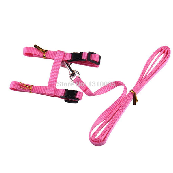 FREE - Cat Harness and Leash Combo