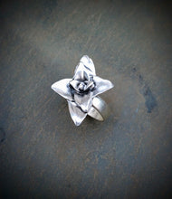 Silver Succulent Plant Ring