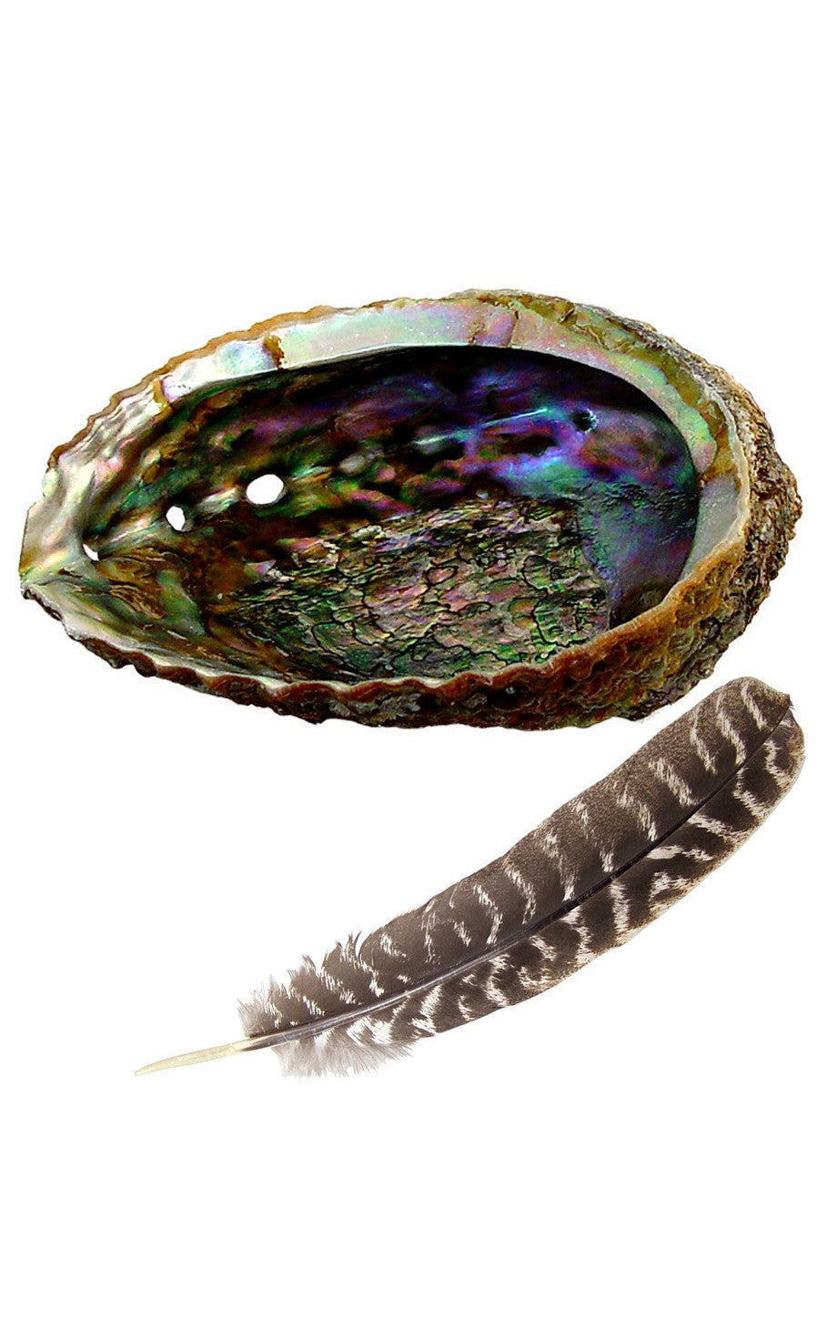 Smudging Kit - Abalone Shell + Feather