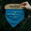 Winter Camping Essentials - Blue Bandana
