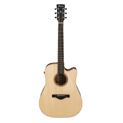 Ibanez Artwood Fingerstyle Acoustic Guitar