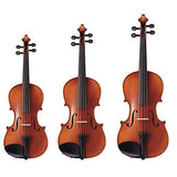 Orchestra Strings - Violin, Viola, Cello, Bass