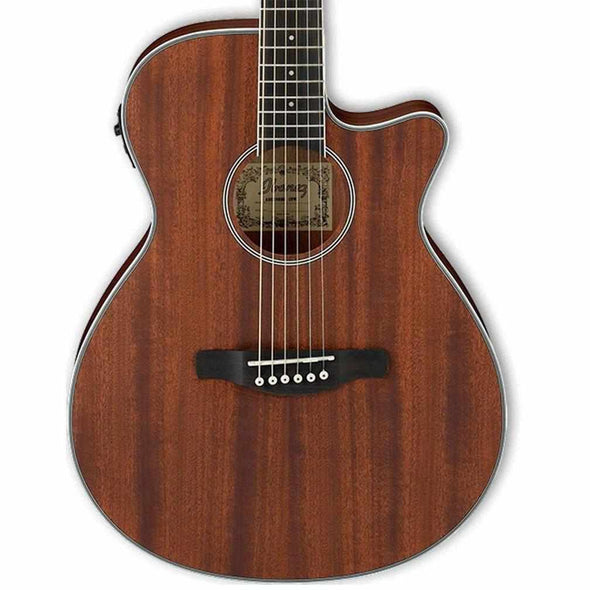 Ibanez AEG8E Acoustic Electric Guitar - Andy's Music