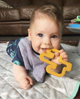 Cactus Mustard Teether