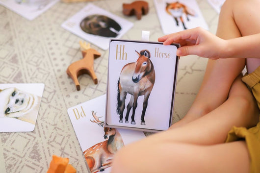 Animal Alphabet Flash Cards ~ SHIPS MID NOV