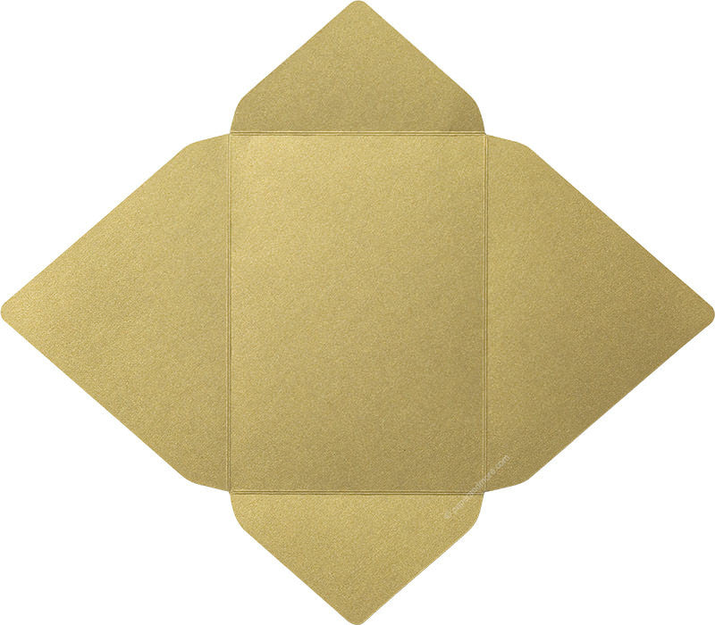 products/a7_gold_leaf_metallic_euro_card_enclosure_open-1.jpg