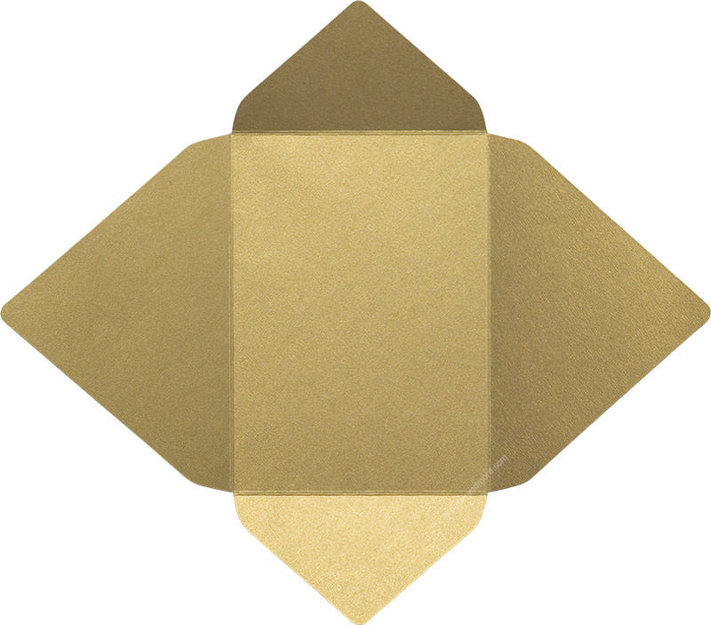 products/a7_gold_leaf_metallic_euro_card_enclosure_open_bend-1_1fe6e621-51ea-4c89-bfd0-3e3c236ecf82.jpg