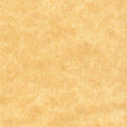 Antique Gold Parchment Paper 60# Text, 8 1/2