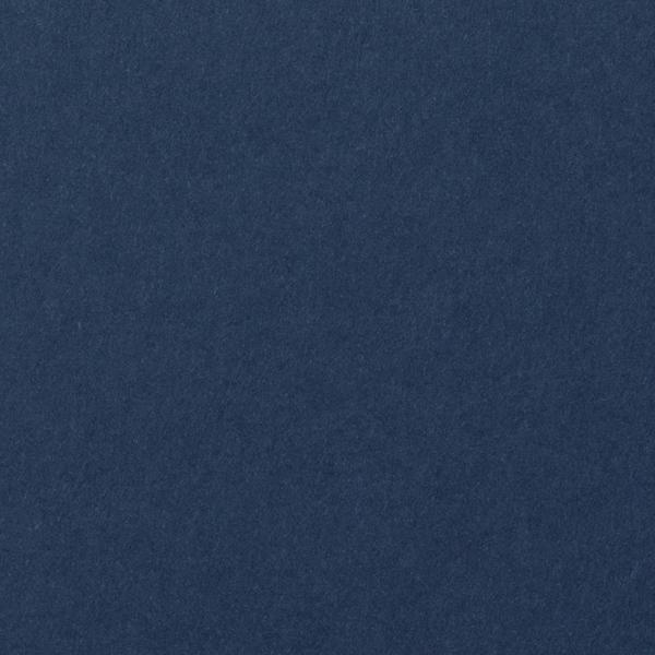 Blazer Blue Solid Card Stock 100 lb, 5