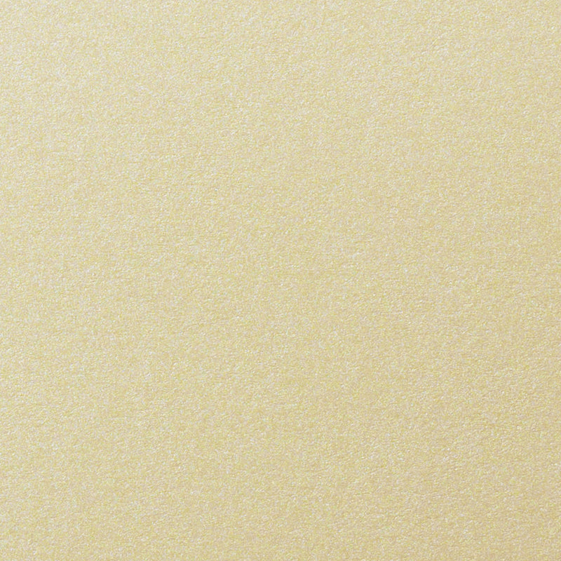 "Champagne Cream Metallic Digital Paper 80# Text, 12"" x 18"" - Paperandmore.com"
