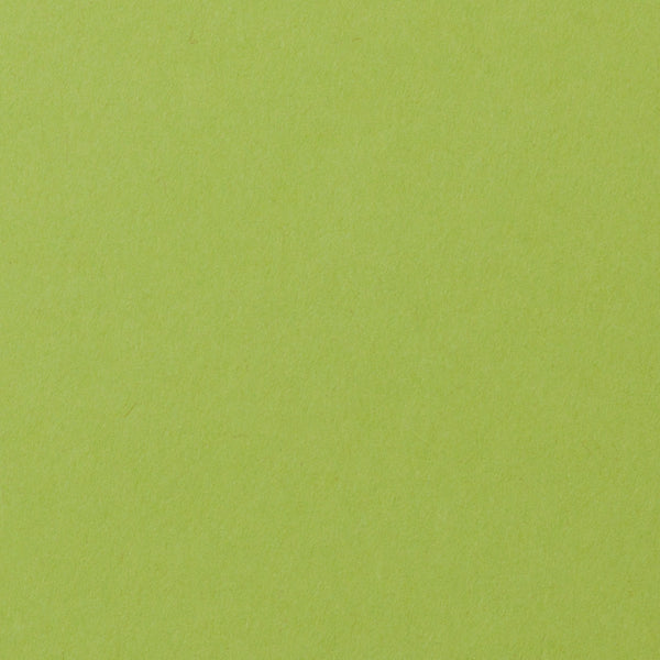 A-7 Green Apple Solid - Euro Flap Envelope Liner - Paperandmore.com