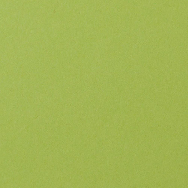 Green Apple Solid Cardstock 100#, A9 Flat Card - Paperandmore.com