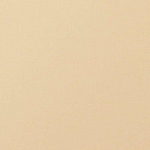 "Ivory Canvas Card Stock 80#, 8 1/2"" x 11"" - Paperandmore.com"
