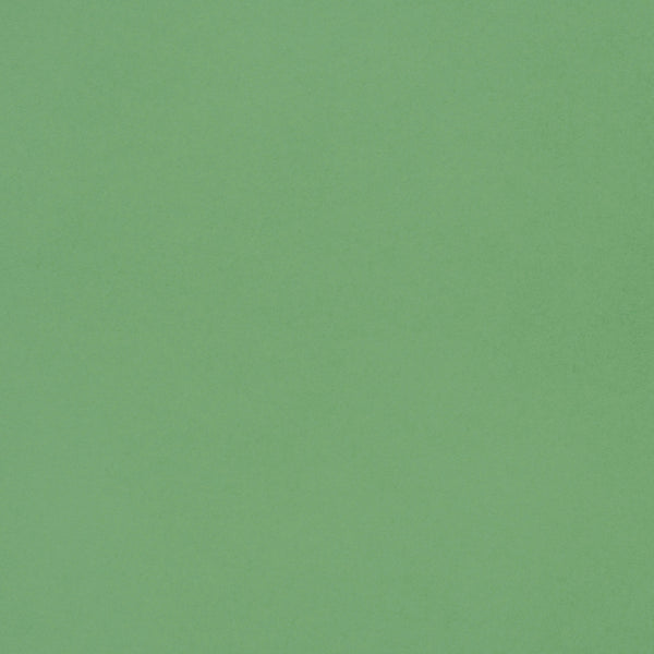 A-7.5 Matcha Tea Green Solid - Euro Flap Envelope Liner