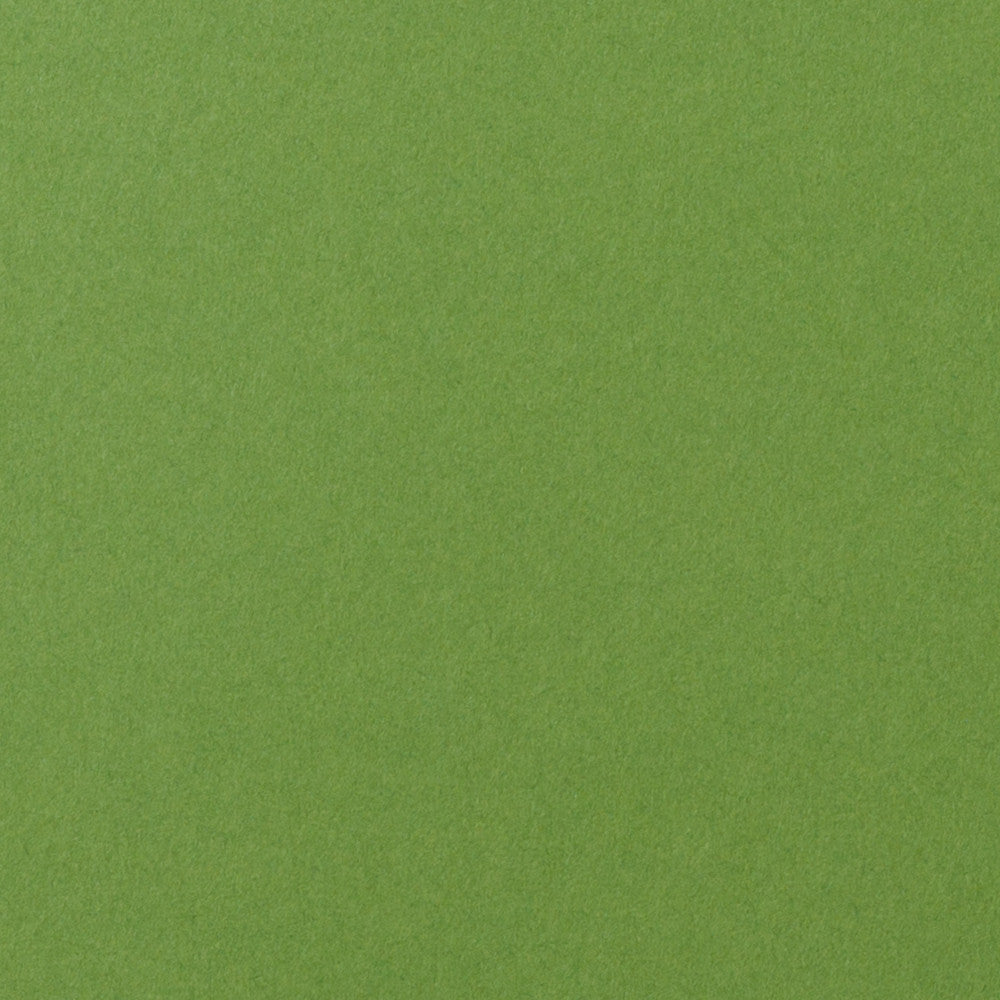 "Meadow Green Solid Card Stock 100#, 5"" x 7"""