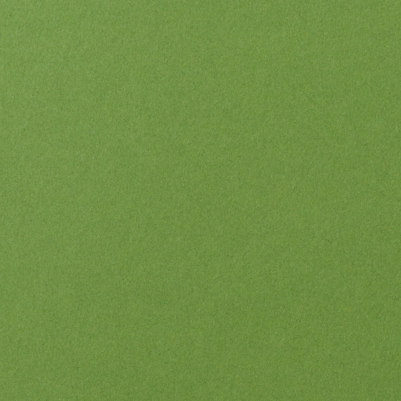 "Solid Meadow Green Card Stock 100#, 8 1/2"" x 11"" - Paperandmore.com"