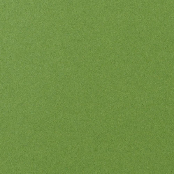 Meadow Green Solid Cardstock 100#, A9 Flat Card - Paperandmore.com