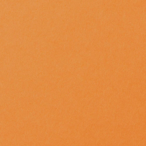 Solid Pumpkin Orange Card Stock 100 lb, 5