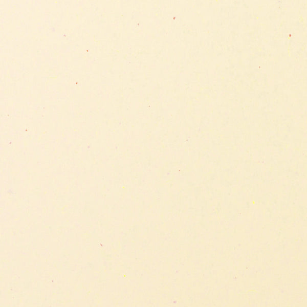 Recycled Sand Specks Paper 80# Text, 8 1/2