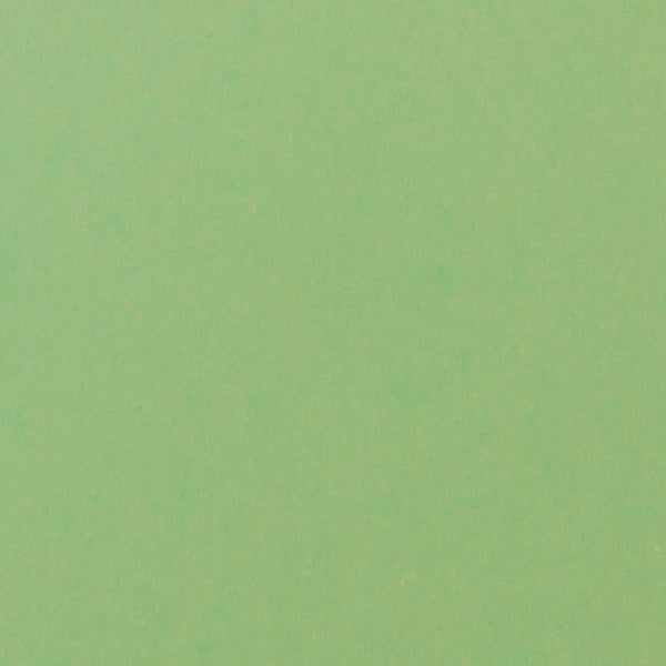 Spearmint Green Solid Card Stock 100 lb, 5