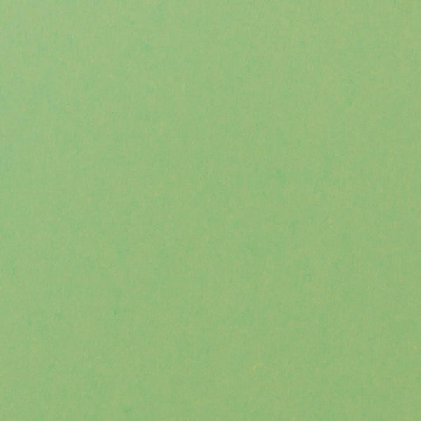 Spearmint Green Solid Cardstock 100#, A9 Flat Card - Paperandmore.com