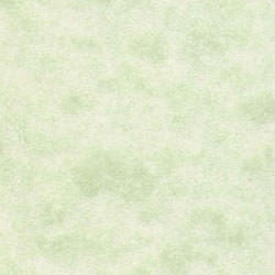 Spring Green Parchment Paper 60# Text, 8 1/2